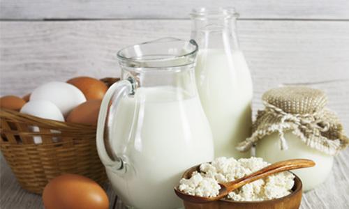 Mleczne produkty i jajka na stole